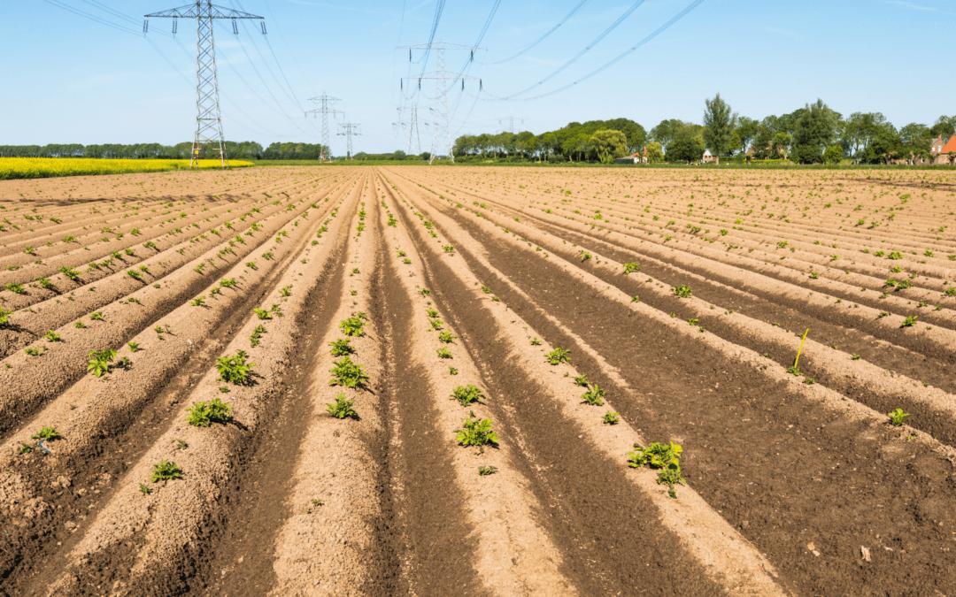 Die hungrige Lücke, die schwerste Zeit für Landwirte