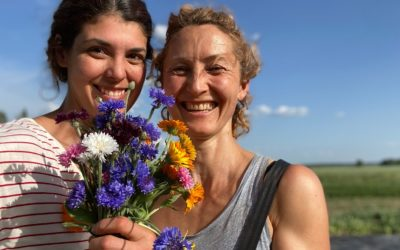 Edible flowers in Berlin in July: where do you get them and how do you cook them?