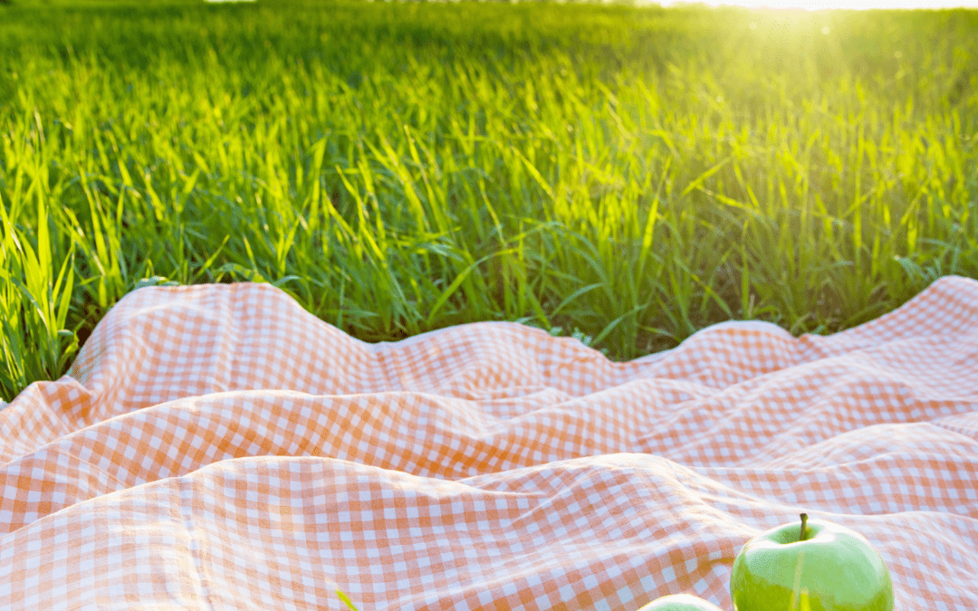A picnic? Yes, but sustainable!